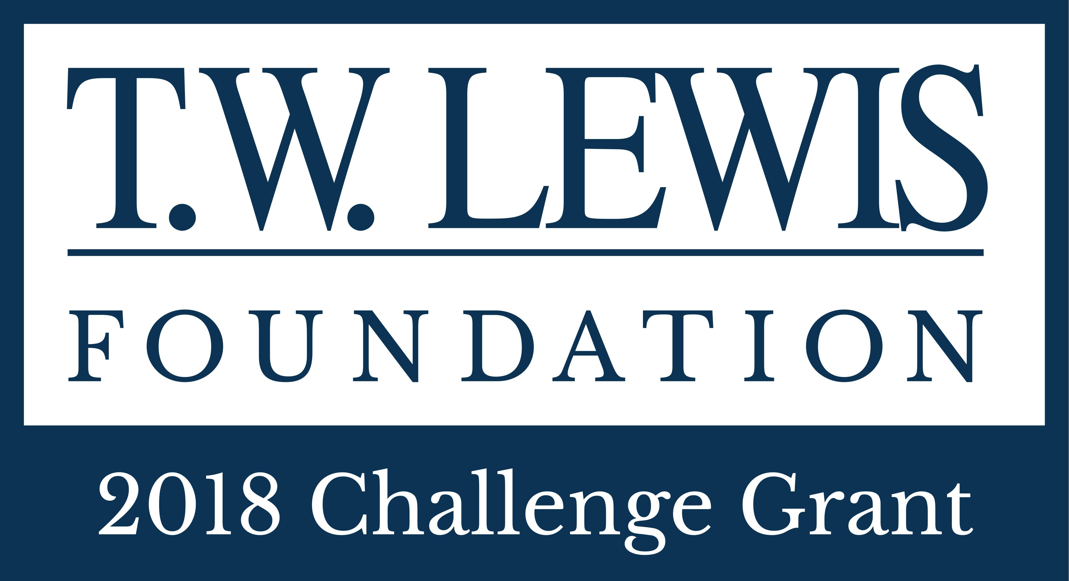 T.W. Lewis Foundation