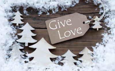 Charitable Donations for the Holiday Season